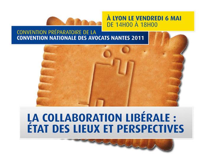 La collaboration libérale :  <br>état des lieux et perspectives