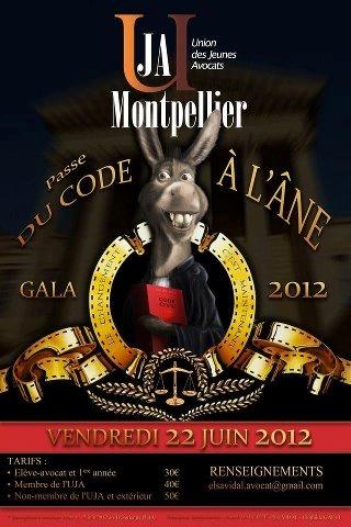 MONTPELLIER : Gala et Revue de l'UJA