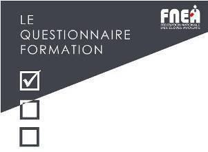 """Résultats et analyse du questionnaire """"formation"""" de la Fédération Nationale des Elèves Avocats"""