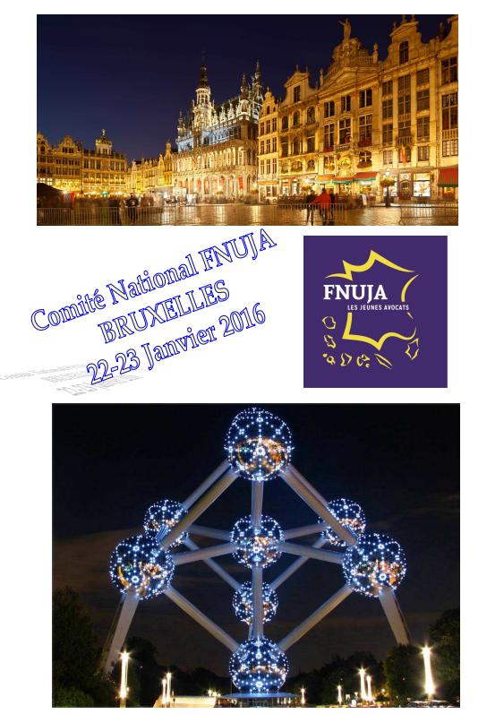 COMITE NATIONAL DECENTRALISE - BRUXELLES